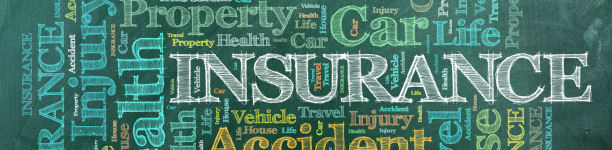 Employee Insurance Coverage at OMNI Group, LLC (Baton Rouge, Louisiana)